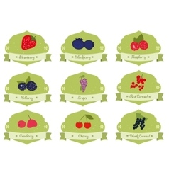 Vintage collection berries sticker vector image vector image