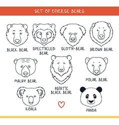 Set 9 muzzles bears handmade in linear style Bear vector image