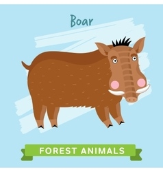 Boar forest animals vector image