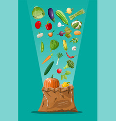 canvas bag full of vegetables vector image
