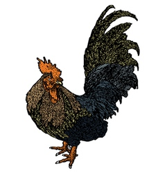 Chicken sketchbook vector image vector image