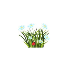 Easter holiday spring banner vector