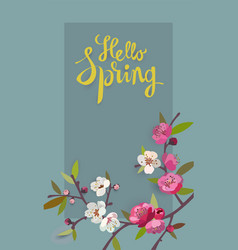 Hello spring card for spring season with flowers vector