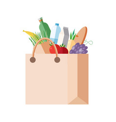 Paper bag with purchases full packet with fresh vector