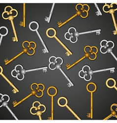 pattern of old keys gold and silver isolated on bl vector image