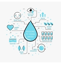 Reasons to drink water vector image