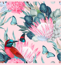 Seamless pattern with birds and protea vector