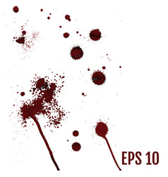 set of various dripping blood splashes collection vector image