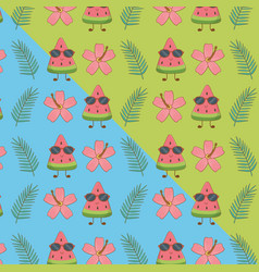 tropical and summer items pattern vector image
