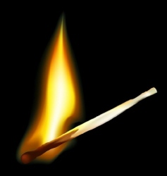 safety match vector image vector image