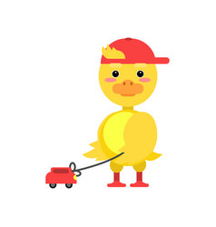Funny little yellow duckling playing with toy car vector