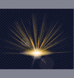 magic golden glowing vector image