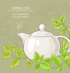 Peppermint tea in teapot vector