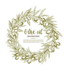 olive wreath sketch label for oil and food design vector image
