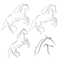 Black line horse on white background icon set vector