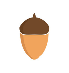 glossy acorn on white background vector image