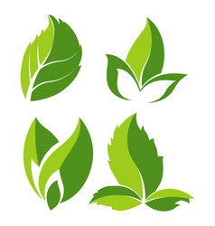 green natural leaves as logo for eco company vector image
