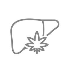 human liver with marijuana leaf line icon vector image