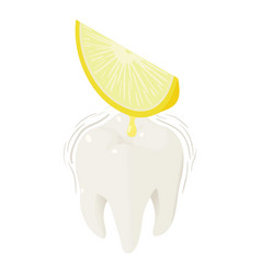 Lemon juice on tooth icon isometric style vector