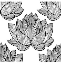 Lotus lily water pattern vector
