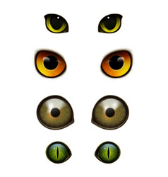 monster animals cats realistic eyes vector image