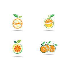 Orange logo template vector