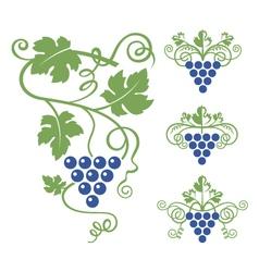 grapes icon set vector image vector image