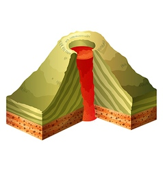 A cross-section of the volcano vector image