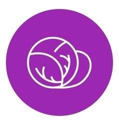 Cabbage line icon vector