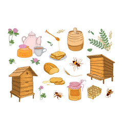 collection honey production beekeeping or vector image