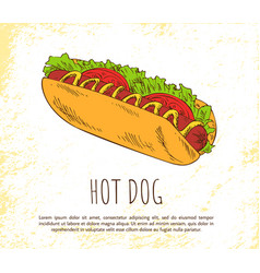 hot dog icon isolated on bright background banner vector image