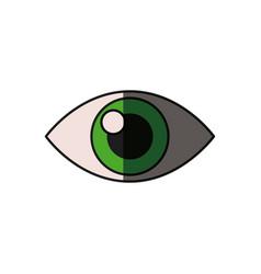 Human eye optical vision shadow vector
