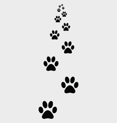 ootprints dogs 2 vector image