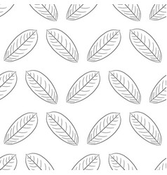 seamless pattern from leaf of plant from the vector image