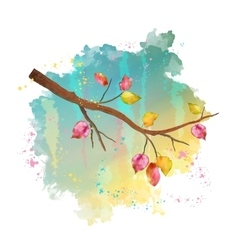 Watercolor autumn tree branch vector image