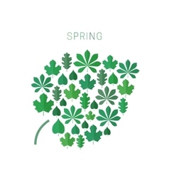 Green spring leaves vector image vector image