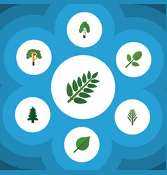 Flat icon natural set of acacia leaf linden vector