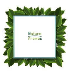 frame template with green leaves vector image