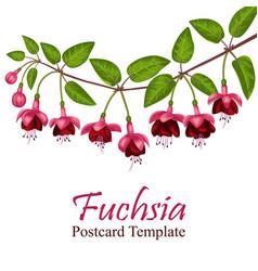 Fuchsia postcard template vector
