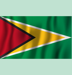 guyana realistic waving flag national country vector image