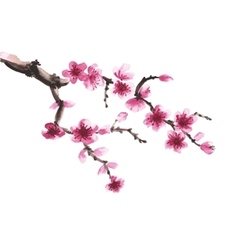 hand-drawn branch sakura vector image