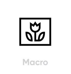 macro picture icon editable line vector image