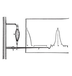 Recording of a muscular contraction vintage vector