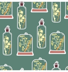 Seamless pattern with hand drawn floral terrariums vector