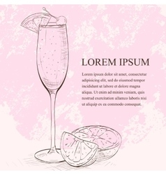 Champagne cocktail scetch vector image