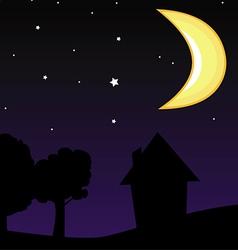 moon night sky vector image