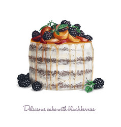 delicious cake with blackberries vector image vector image