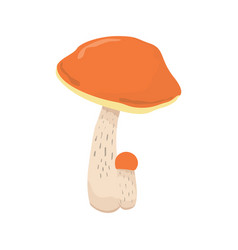 forest edible mushroom flat vector image vector image