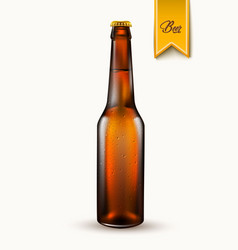 realistic beer bottle mockup 3d isolated vector image vector image