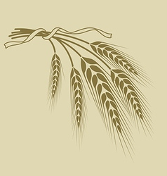 spikelets of wheat tied with a ribbon on a beige vector image vector image